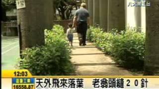 媒體報導:林世宗議員抨擊公務員不作為,天降橫禍,社子公園椰子葉砸老翁頭破血流---八大電視台